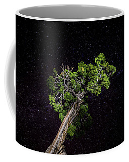 Coffee Mug featuring the photograph Night Tree by T Brian Jones