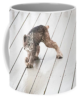 Ninja Lynx Kitty Coffee Mug