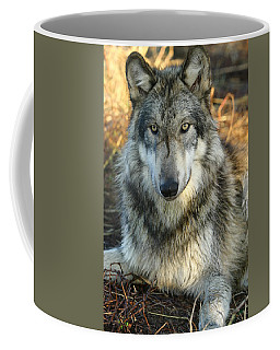 Coffee Mug featuring the photograph Noble Lupine by Shari Jardina