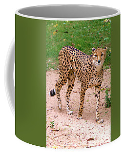 North African Cheetah Coffee Mug