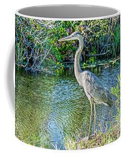 North American Beauty Coffee Mug