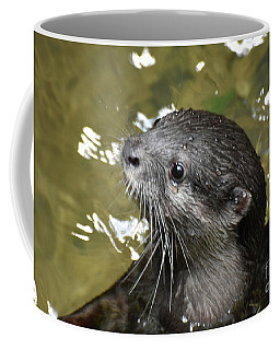 North American River Otter Swimming In A River Coffee Mug