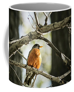 Coffee Mug featuring the photograph North American Robin by Brad Allen Fine Art