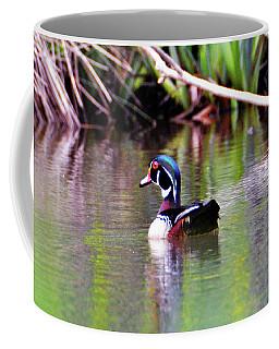 North Bound Wood Duck Coffee Mug by Kathy Kelly