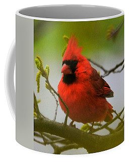 North Carolina Cardinal Coffee Mug