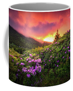 North Carolina Mountains Outdoors Landscape Appalachian Trail Spring Flowers Sunset Coffee Mug