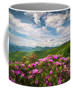 North Carolina Spring Flowers Mountain Landscape Blue Ridge Parkway Asheville Nc Coffee Mug