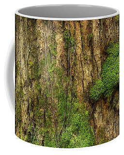 Coffee Mug featuring the photograph North Side Of The Tree by Mike Eingle