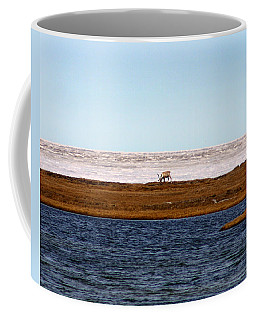 North Slope Coffee Mug