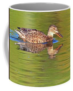 Norther Shoveler Female Coffee Mug by Tam Ryan