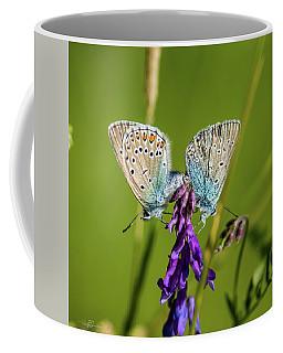 Northern Blue's Mating Coffee Mug