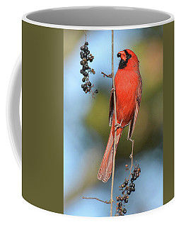 Northern Cardinal With Berry Coffee Mug