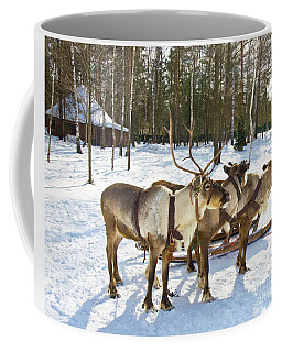 Northern Deers Coffee Mug by Irina Afonskaya