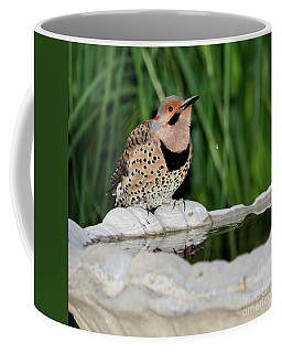 Northern Flicker Drinking Coffee Mug