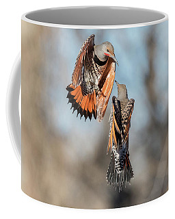 Northern Flicker Fight Coffee Mug