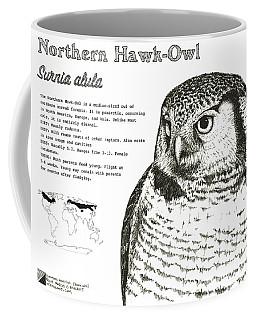Northern Hawk-owl Infographic Poster Coffee Mug