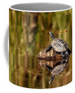 Northern Map Turtle Coffee Mug