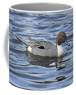 Northern Pintail Coffee Mug