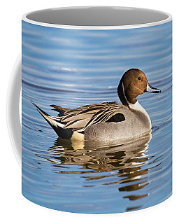 Northern Pintail Duck Coffee Mug