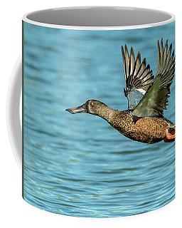 Northern Shoveler 6351-100217-2cr Coffee Mug
