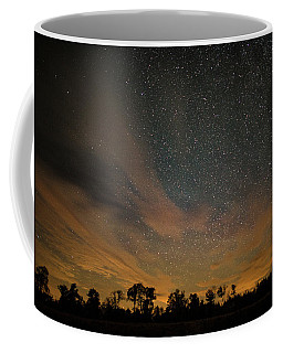 Northern Sky At Night Coffee Mug