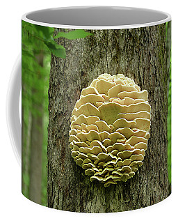 Northern Tooth Fungus Coffee Mug