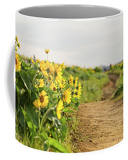 Northwest Balsamroot On Mosier Plateau Coffee Mug