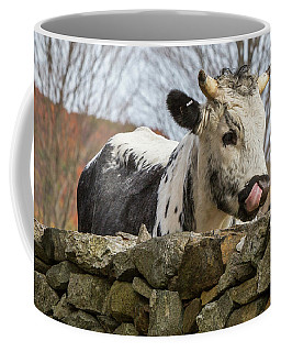 Coffee Mug featuring the photograph Nosey by Bill Wakeley