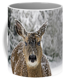 Coffee Mug featuring the photograph Not Happy - 365-279 by Inge Riis McDonald