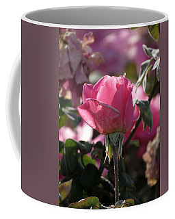Coffee Mug featuring the photograph Not Perfect But Special by Laurel Powell