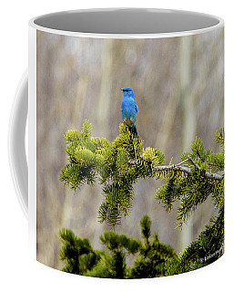 Notice The Pretty Bluebird Coffee Mug by Yeates Photography
