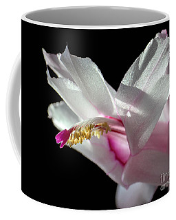 November Splendor Coffee Mug