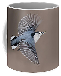 Coffee Mug featuring the photograph Nuthatch In Flight by Mircea Costina Photography