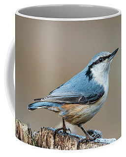 Nuthatch's Pose Coffee Mug
