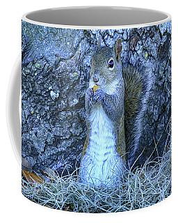 Coffee Mug featuring the photograph Nuts Anyone by Deborah Benoit