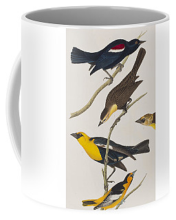 Nuttall's Starling Yellow-headed Troopial Bullock's Oriole Coffee Mug