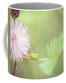 Coffee Mug featuring the photograph Nymph by Heather Applegate