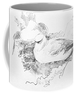 New Zealand White-capped Mollymawk Coffee Mug