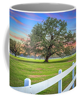 Oak Alley Signature Tree At Sunset Coffee Mug