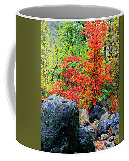 Oak Creek Canyon Red Coffee Mug