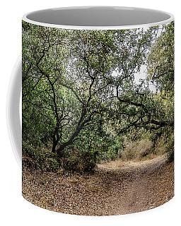 Oak Forest Trail Coffee Mug