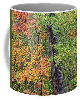 Oak Hickory Woodland Coffee Mug by Tim Fitzharris