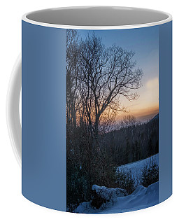 Coffee Mug featuring the photograph Oak In Winter by Tom Singleton
