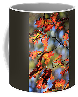 Oak Leaf Cluster Coffee Mug