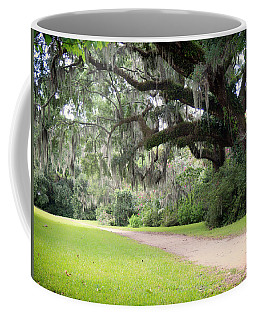 Oak Over The Trail Coffee Mug