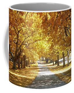 Oak Tree Avenue In Autumn Coffee Mug