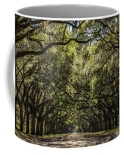 Oak Tree Tunnel #2 Coffee Mug