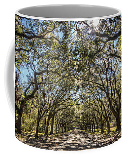 Oak Tree Tunnel #3 Coffee Mug