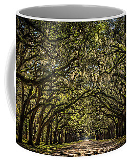 Oak Tree Tunnel Coffee Mug