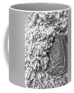 Coffee Mug featuring the photograph Oatmeal by Robert Knight